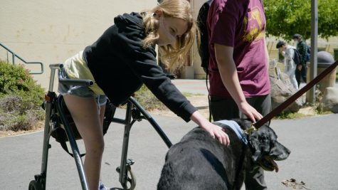 Junior Ginger Rodgers pets a dog during the Wellness Center