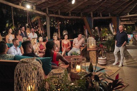 Which rose will you accept? A look into The Bachelor franchise's best shows